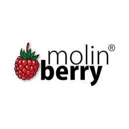 Molinberry Concentrates